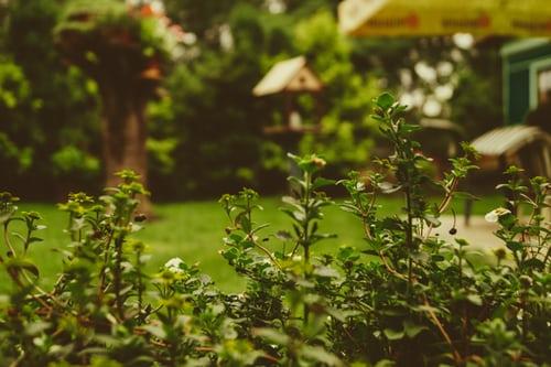 Kosilnice za profesionalno vrtnarsko in kmetijsko rabo